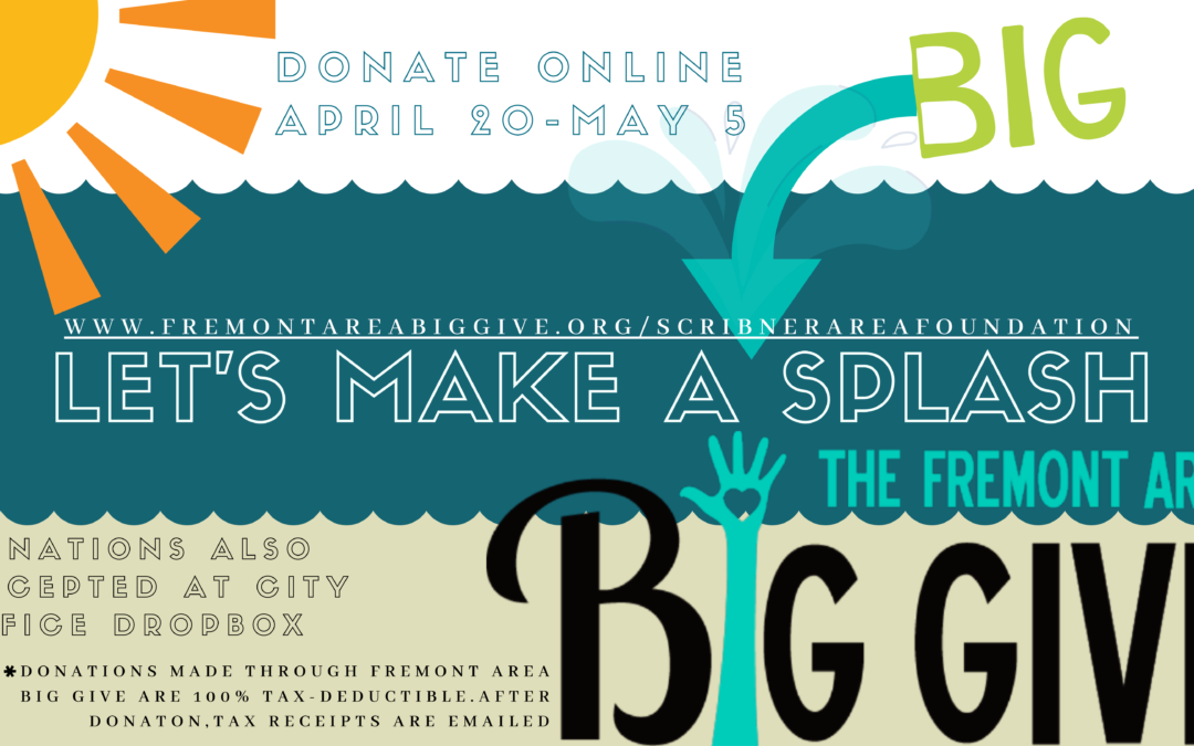 BIG GIVE // SCRIBNER POOL